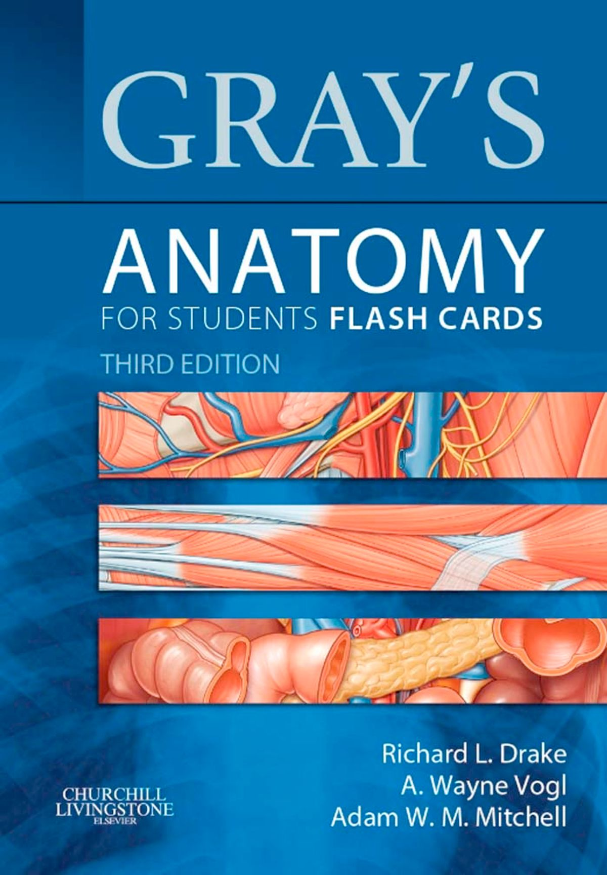 Gray's Anatomy for Students Flash Cards E-Book (TIP!)
